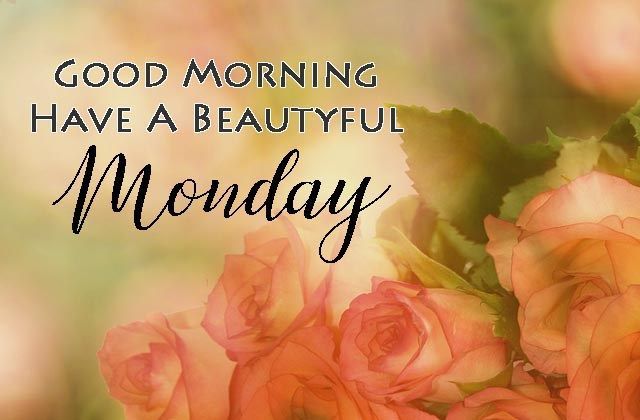 Top 20 Best Happy Monday Status in Hindi 2021