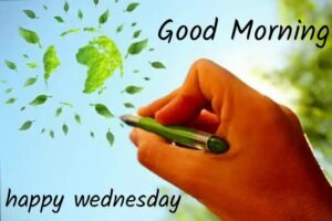 Top 20 Best Happy Wednesday Status in Hindi 2021